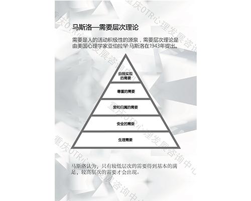 心理咨询需要层次(动力图)
